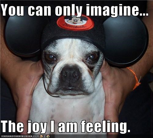 annoyed,hat,Joy,mickey mouse,pug