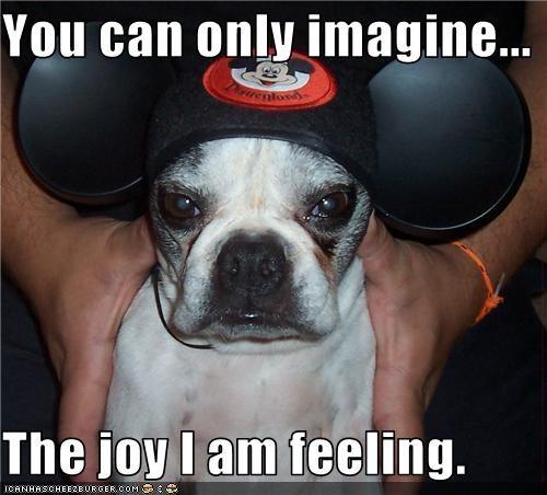 annoyed hat Joy mickey mouse pug - 3499314432