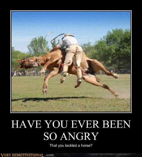 HAVE YOU EVER BEEN SO ANGRY That you tackled a horse?