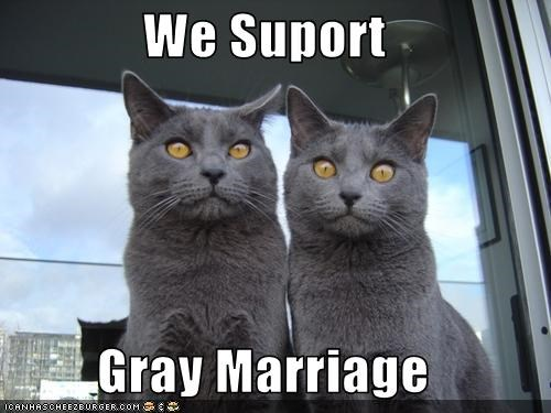 We Suport  Gray Marriage