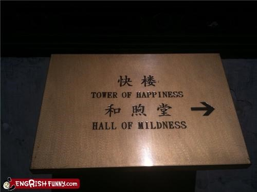 hall happieness mildness tower wtf - 3499729408