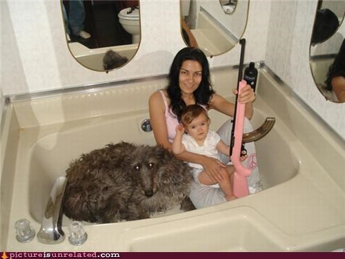 baby bath tubs dogs family portrait gun pink wtf - 3499841024