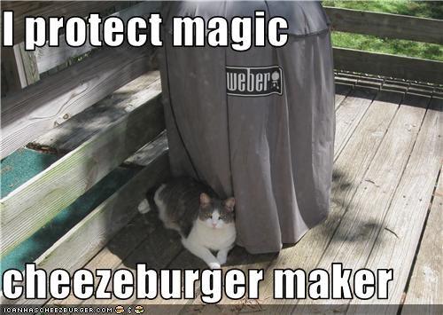 Cheezburger Image 3499851776