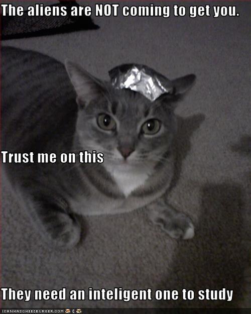 Cheezburger Image 3501203968