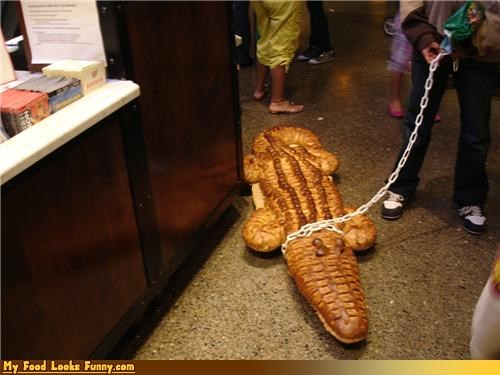 aligator,animals,bread,crocodile,crocoloaf,leash,loaf,loaf of bread