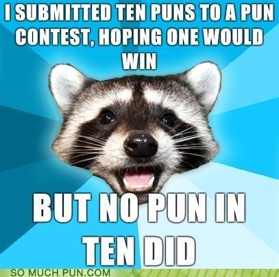 meme generator,pun,raccoon