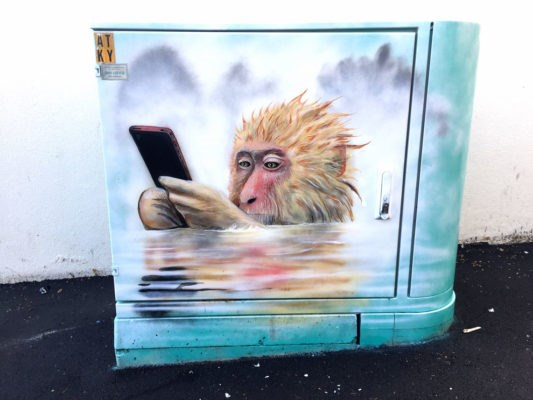 decorating street utility boxes with animal art