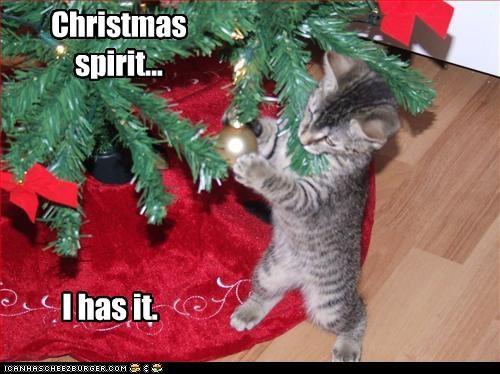 Christmas spirit... I has it.