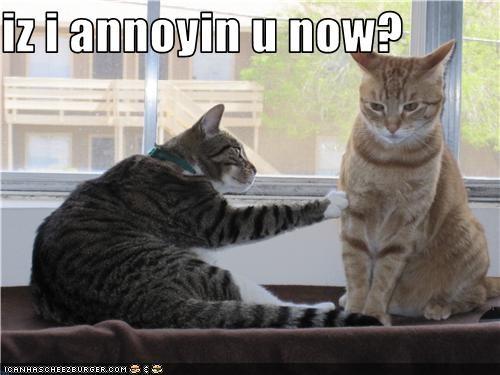 annoying friend - 3507415808