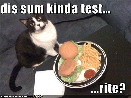 Cheezburger Image 3507423744