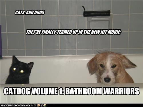 THEY'VE FINALLY TEAMED UP IN THE NEW HIT MOVIE: CATS AND DOGS CATDOG VOLUME 1: BATHROOM WARRIORS