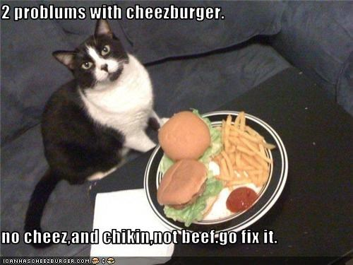 Cheezburger Image 3507504384
