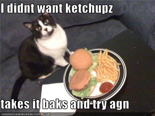 Cheezburger Image 3507507456