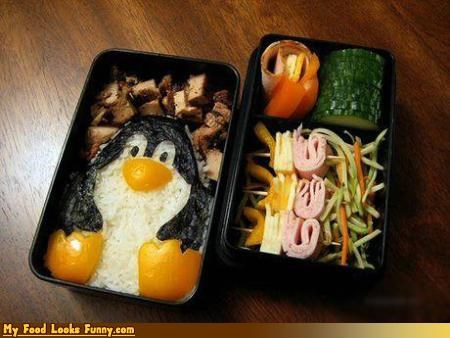 animals,box,meats,penguin,rice,salad