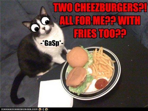 Cheezburger Image 3508431104