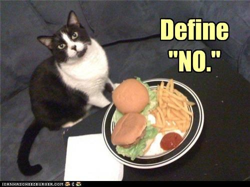 captioned cheeseburger cheezburger define denial do not understand i can has no request