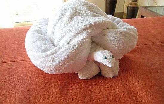a list of animals in towel form