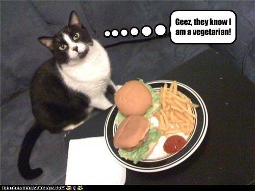 Cheezburger Image 3510434304