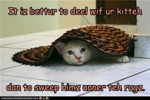 hiding,rug