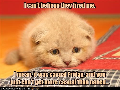 au natural casual friday cat depressed fired Hall of Fame job Sad - 3512662272