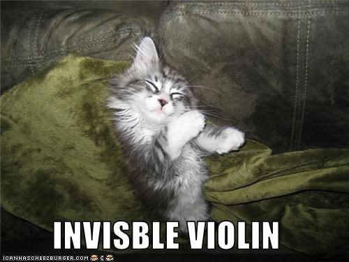 invisible,violin