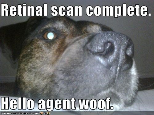 eye scan secret agent whatbreed