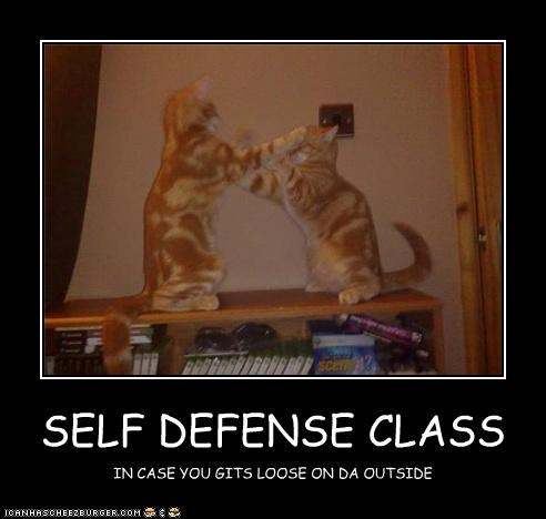 SELF DEFENSE CLASS IN CASE YOU GITS LOOSE ON DA OUTSIDE