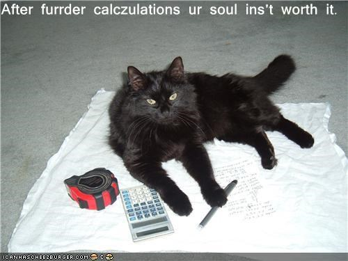 basement cat calculator cat math pencil soul tape measure - 3513294336