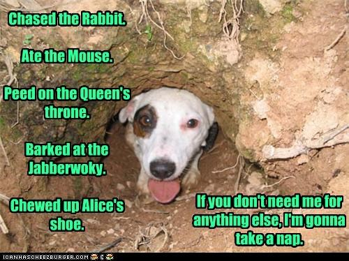 alice in wonderland dig dirt Hall of Fame hole list mixed breed nap to do