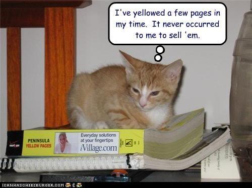 books pee plotting - 3513410048