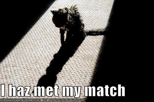 met my match