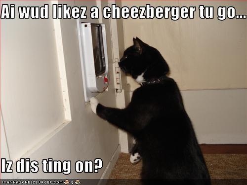Cheezburger Image 3514223360