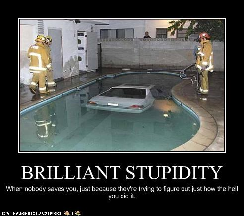 BRILLIANT STUPIDITY When nobody saves you, just because they're trying to figure out just how the hell you did it.
