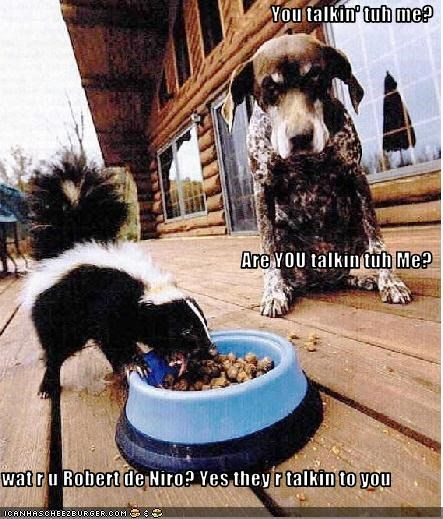Cheezburger Image 3514331648