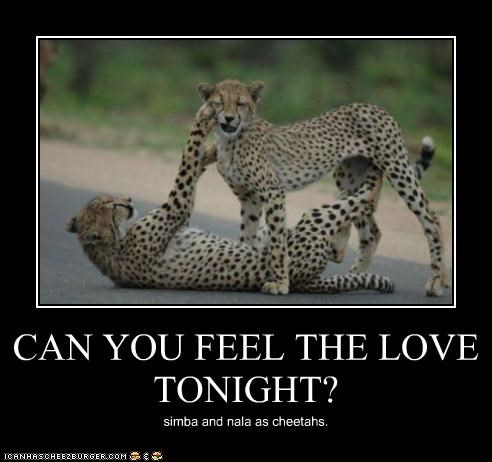 40 Most Funniest Love Meme Pictures On The Internet