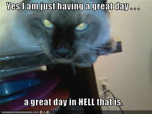 Yes I am just having a great day . . .   a great day in HELL that is.