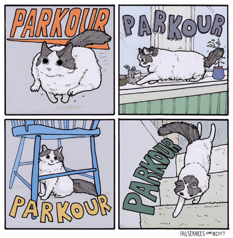 comics about the life of animals