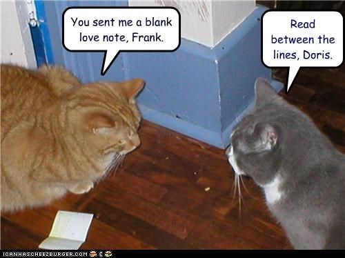 between,blank,caption,captioned,cat,Cats,inference,lines,love,love note,meaning,note,read,suggestion,tabby