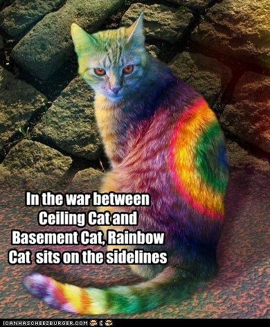 In the war between Ceiling Cat and Basement Cat, Rainbow Cat  sits on the sidelines