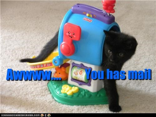 aww caption captioned cat have kitten mail mailbox stuck toy you - 3518449664