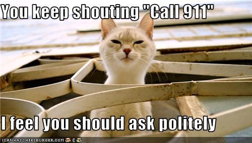 911,ask,call,caption,captioned,cat,danger,politely,shouting,suggestion