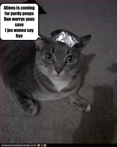 Cheezburger Image 3519305216