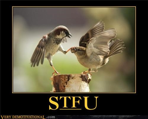 anthropomorphizing birds Hall of Fame impossible mean stfu - 3519400704