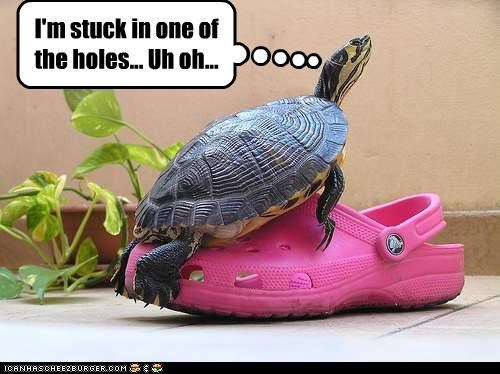 I'm stuck in one of the holes... Uh oh...