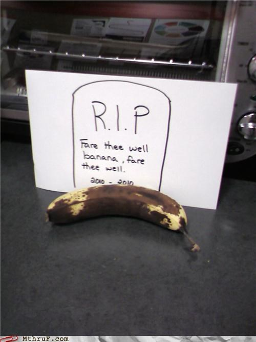 banana,boredom,compost,creativity in the workplace,cubicle boredom,cubicle fail,decomposing,decoration,depressing,fridge politics,funeral,grave stone,gross,head stone,lazy,rip,rotten,sass,sculpture,signage,wasteful,wiseass