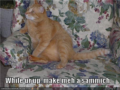 fud lazy sammich want - 3523499776