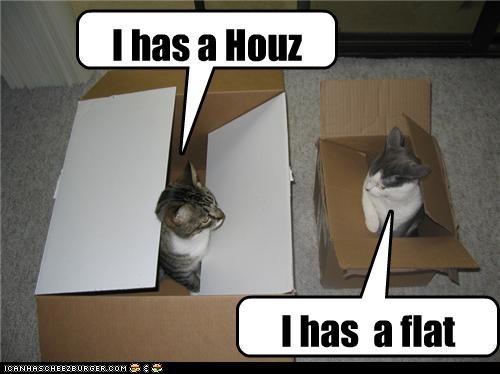 I has a Houz I has a flat