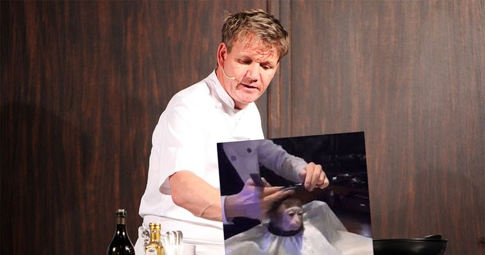 rambo gordon ramsay anime donald trump haircut SpongeBob SquarePants Memes monkey wrestling - 3526405