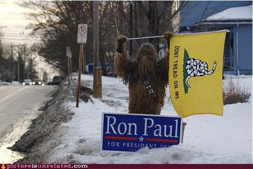 chewbacca,costume,politics,Ron Paul,star wars,taxes,Wookies,wtf