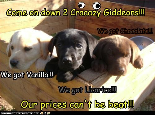 Come on down 2 Craaazy Giddeons!!! We got Chocolate!!! We got Licorice!!! We got Vanilla!!! Our prices can't be beat!!!